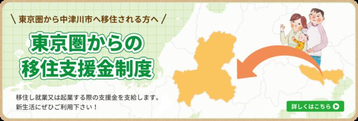 東京圏からの移住支援金制度